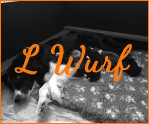 L Wurf