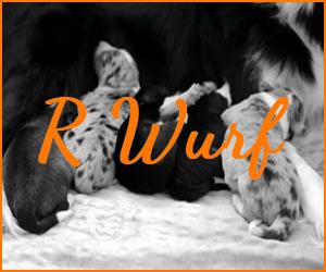 R Wurf
