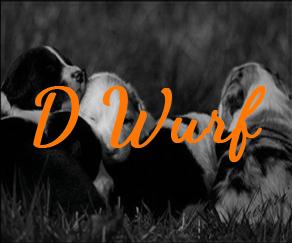 D Wurf