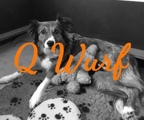 Q Wurf
